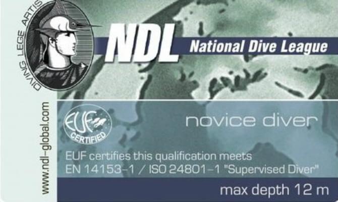 NDL Novice