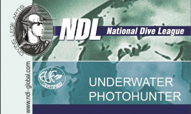 NDL - Underwater_Photohunter