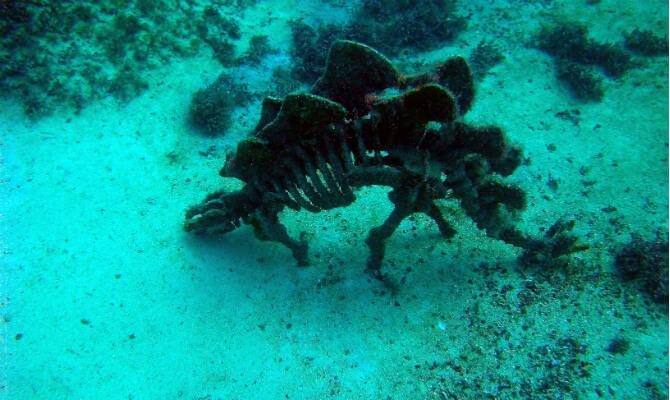 Тарханкут - первый в Советском Союзе подводный музей - динозаврик