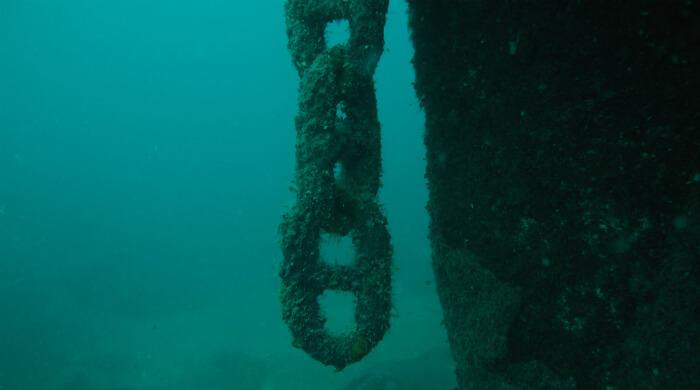 Затопленный транспорт Борис. Свисающая цепь.