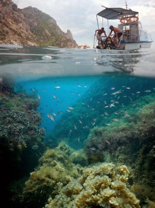 Обучение дайвингу позволит увидеть все, что спрятано под водой ФОТО