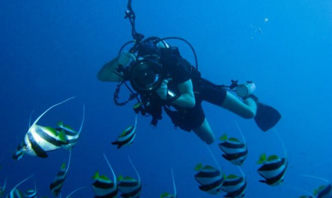 Подводный фотограф Олег Федин под водой