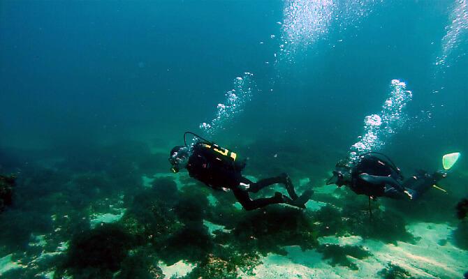 Обучение дайвингу в Голубой бухте Севастополя ФОТО группа под водой