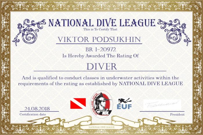 Фото сертификата Виктора Подсухина Diver